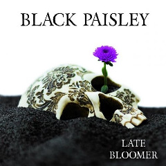black-paisley-late-bloomer-2017-320_2